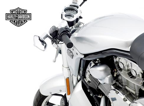 studio photography bike 1 motorbike harley